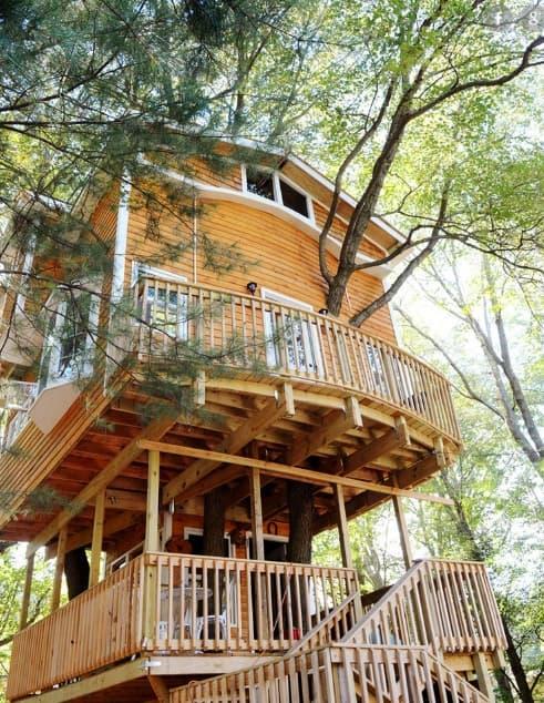 Дом на дереве. Советы по строительству (1)