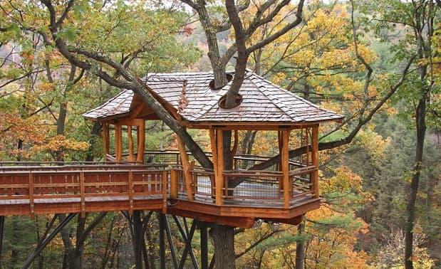 Дом на дереве. Советы по строительству (4)