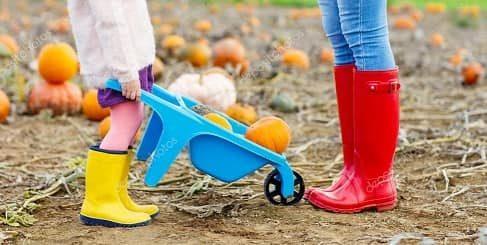 Как выбрать хорошую детскую обувь (1)