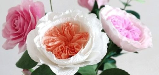 Английские розы Дэвида Остина из бумаги (2)