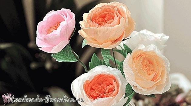 Английские розы Дэвида Остина из бумаги (1)