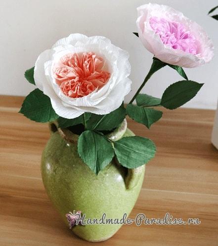 Английские розы Дэвида Остина из бумаги (4)