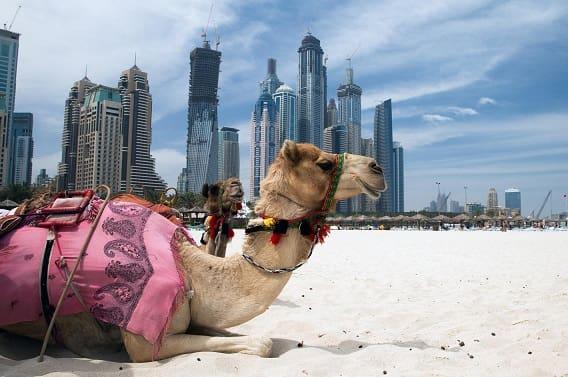 Правила отдыха в арабских странах (1)