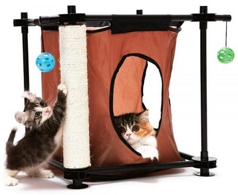ТОП-З лучших подарка для кошки своими руками (2)