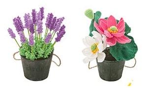 Лаванда - комнатные растения крючком (3)