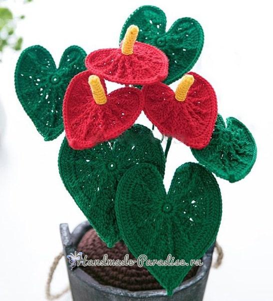 Цветы крючком - Антуриум (1)