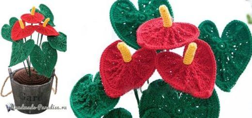 Цветы крючком - Антуриум (2)