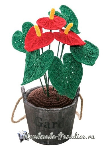 Цветы крючком - Антуриум (3)