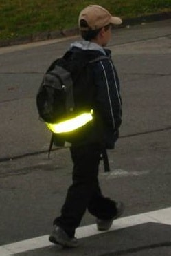 Отражённый свет сохраняет жизнь (1)