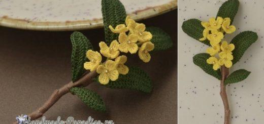 Веточка цветущего абрикоса крючком (2)