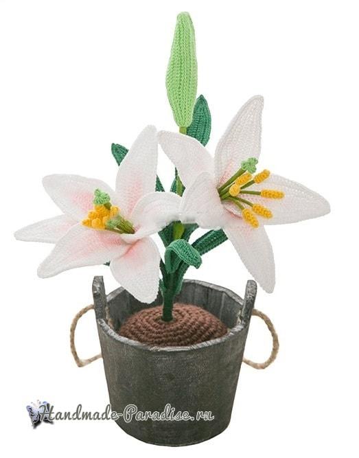 Лилия садовая крючком. Схемы вязания (1)