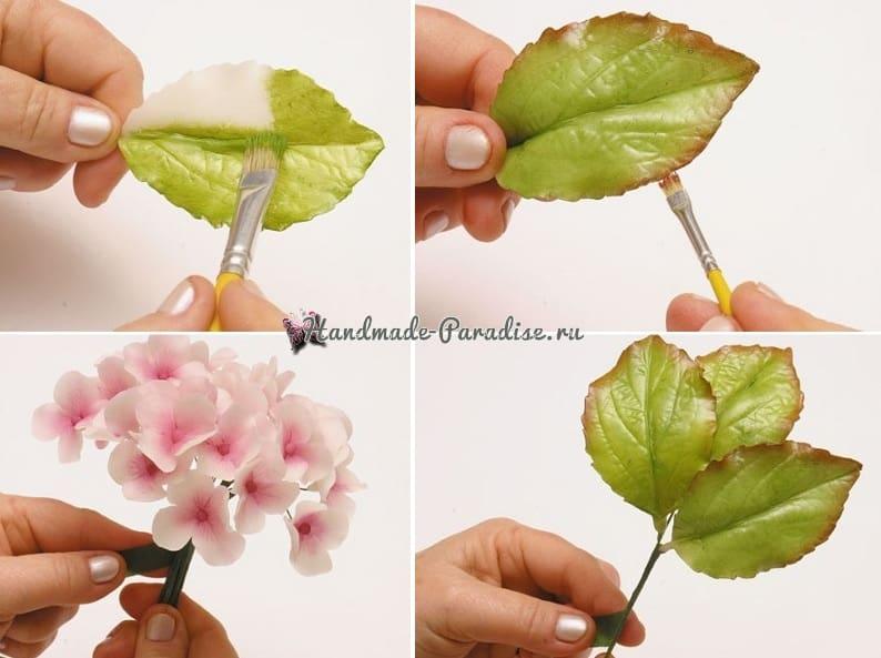 Цветы гортензии из холодного фарфора (4)