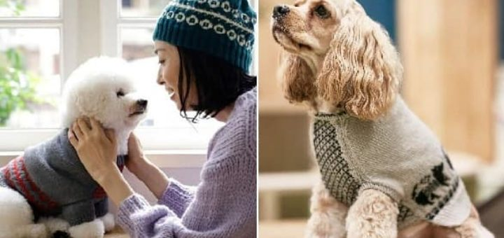 Dog & Owner's Matching Knit and Crochet (2)