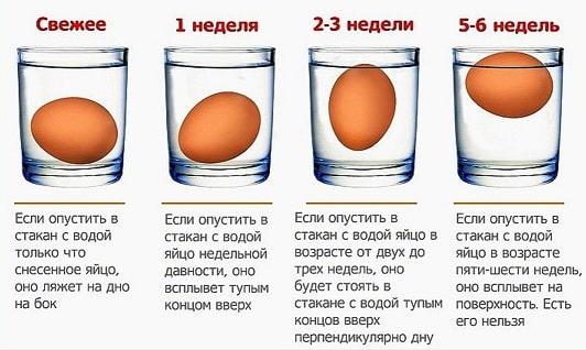 Как определить свежесть яйца