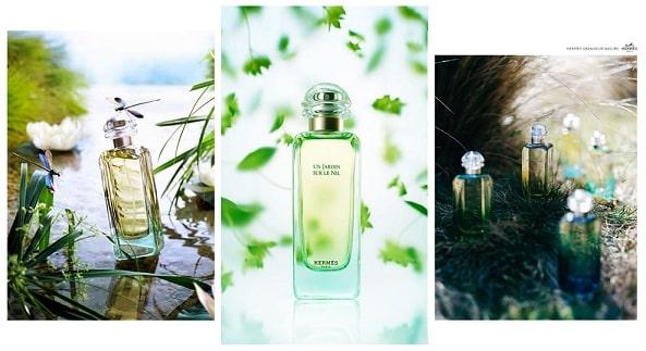 Какие женские духи Hermes выбрать - разбираемся в ароматах (1)