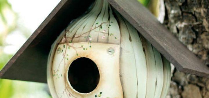 Скворечник из тыквы-горлянки